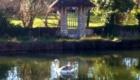 jardin exterieur2
